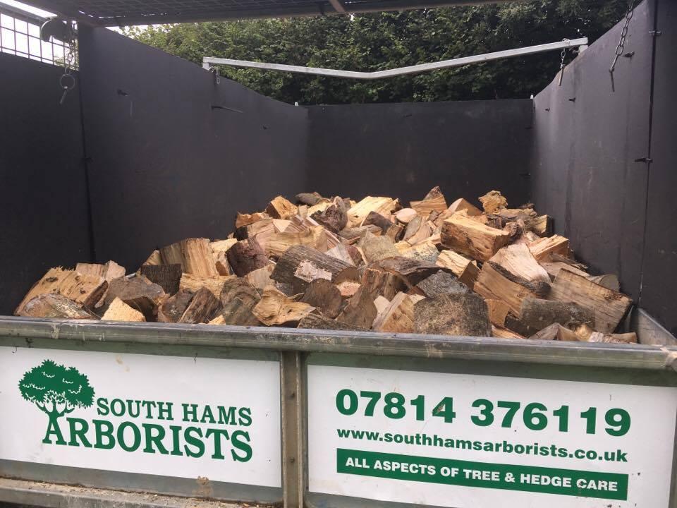 firewood logs devon